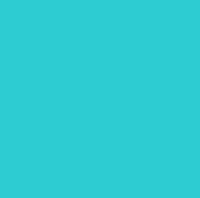 Arizona Diamond Backs Teal New Logo