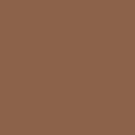 Arizona Diamond Backs Copper Old Logo